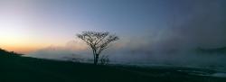 149_LZmL_69 Dawn Mist #2