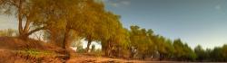 204_LZmE_388 Chipela Chandombo Lagoon, October