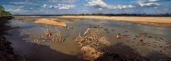 189_LZmE_335 Luangwa River & Hippos