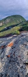 008_LZmMut_155V Lichen Algae Rocks & Mt Mayense
