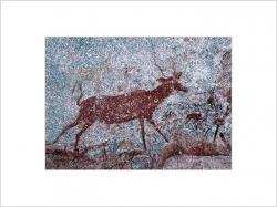 AFRICAN ROCK ART - Prints & Framed Prints